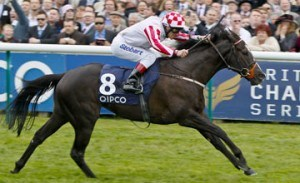 Sole Power Haydock Sprint Cup Preview