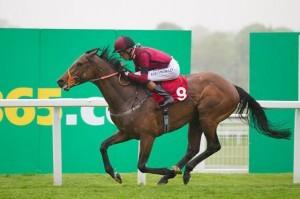 Windshear Horse Doncaster St Leger