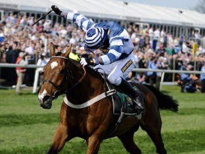 Oscar Whisky Horse