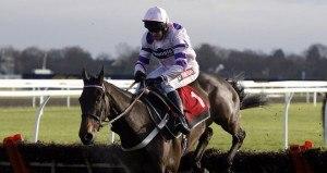Bivouac Horse Cheltenham trials 2015