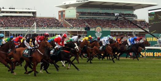 Grand National 2015 Horses