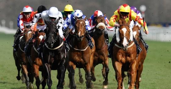 Go horse racing betting paganese vs casertana bettingexpert football