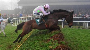 Djakadam in action, can he leap his way to Gold Cup glory?